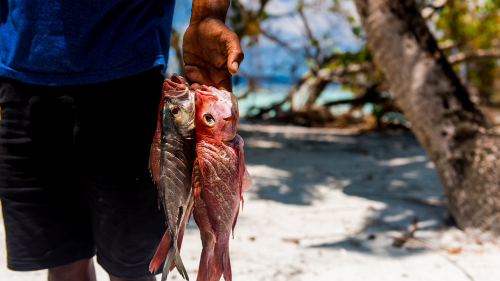 Malediwy Nilandhoo-57