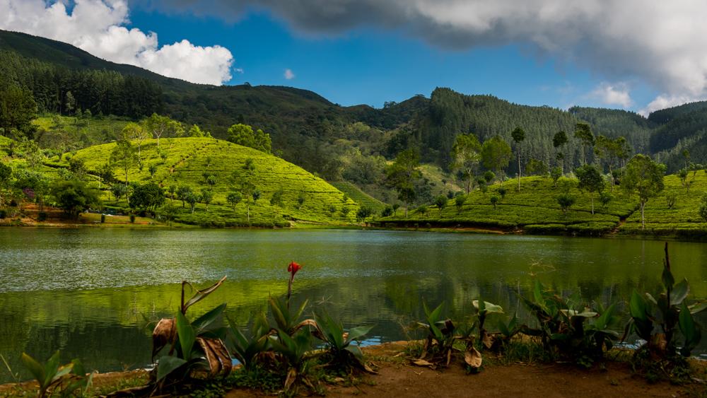 Sri Lanka Sembuwatte Lake-21