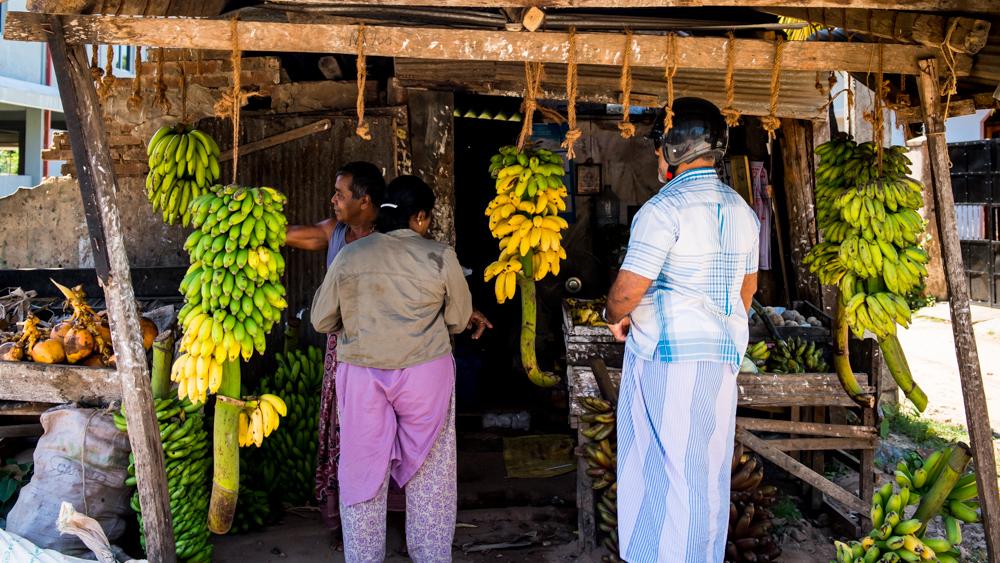 Sri Lanka najpiekniejsze miejsca-20