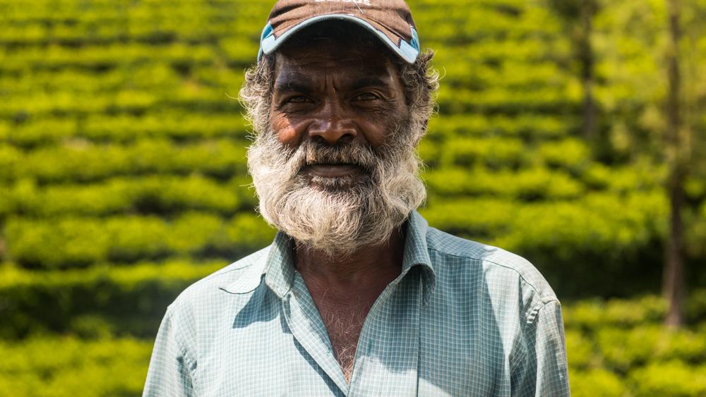 Sri Lanka najpiekniejsze miejsca-31