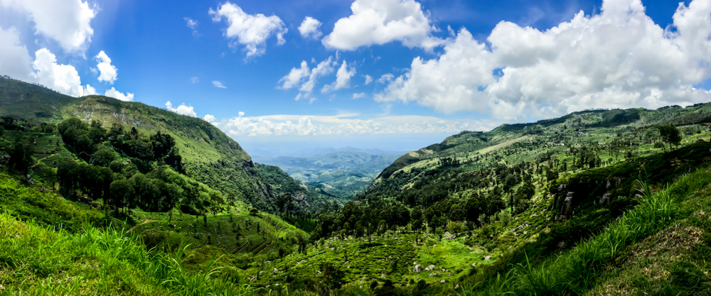 Sri lanka Kandy-19