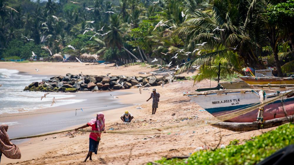 Co robic na Sri Lance-16-2
