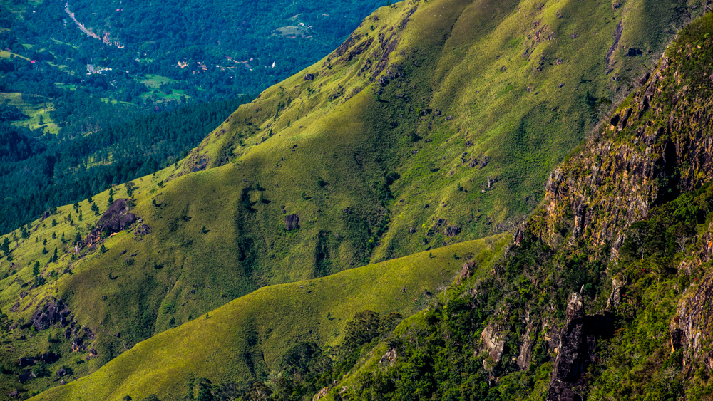 Horton Plains-18
