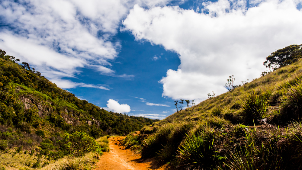 Horton Plains-28