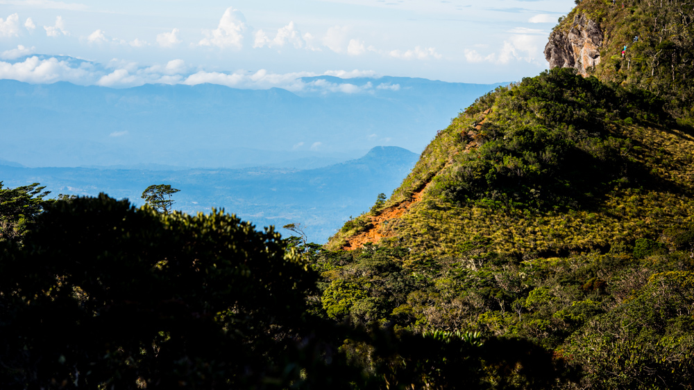 Horton Plains-9