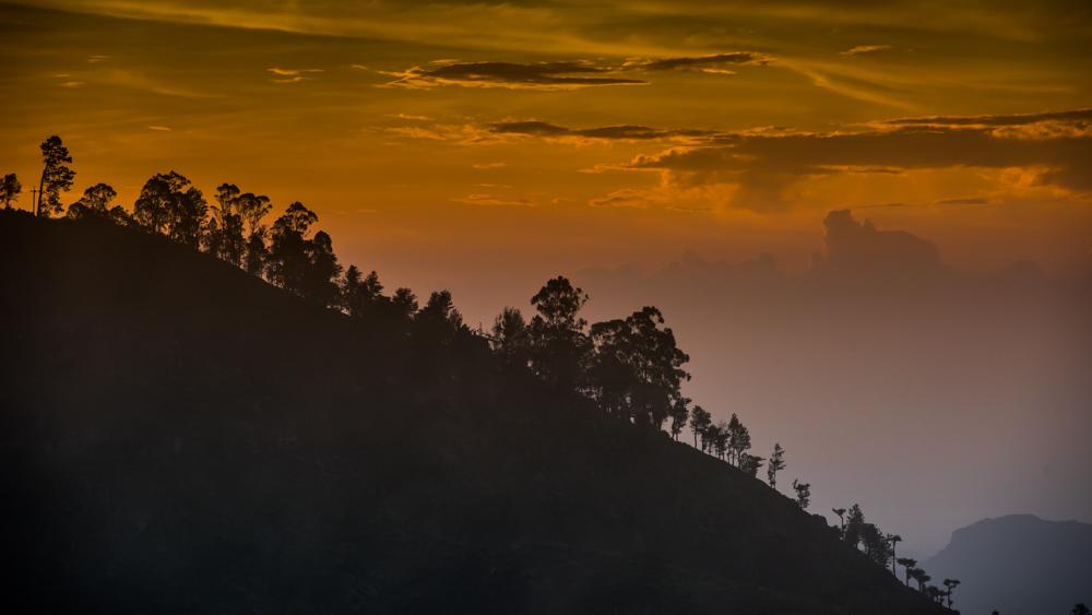 Haputale Sri Lanka-21
