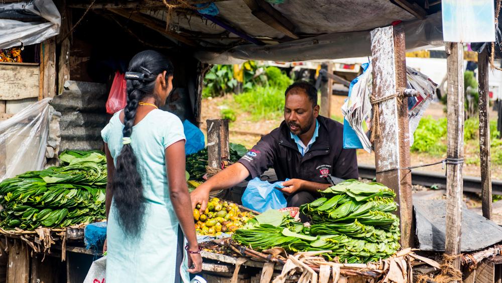 Haputale Sri Lanka-4