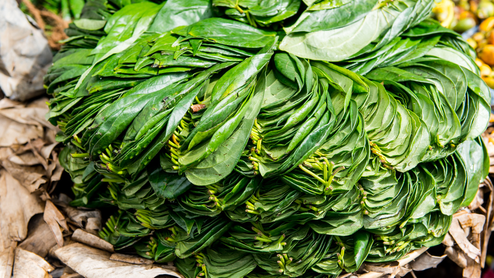 Haputale Sri Lanka-5