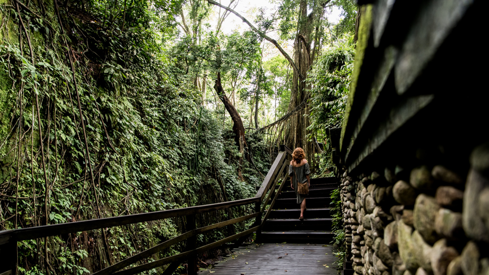 Ubud Moneky Forest-13