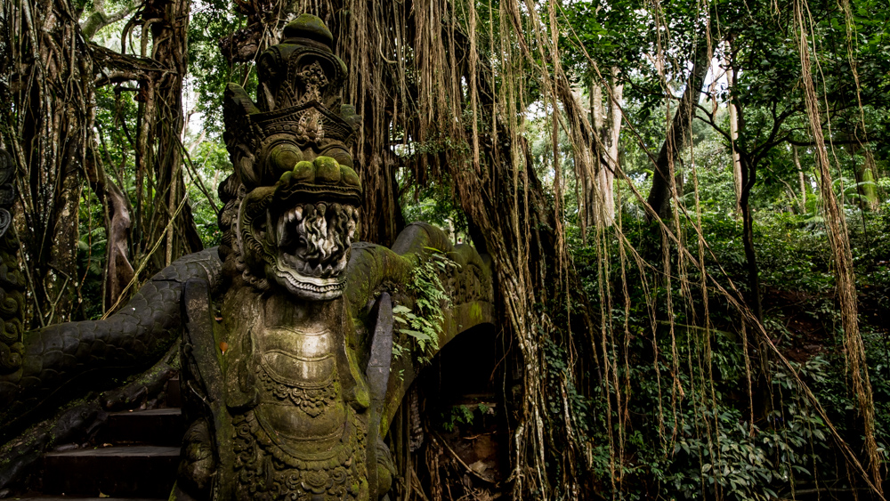 Ubud Moneky Forest-15
