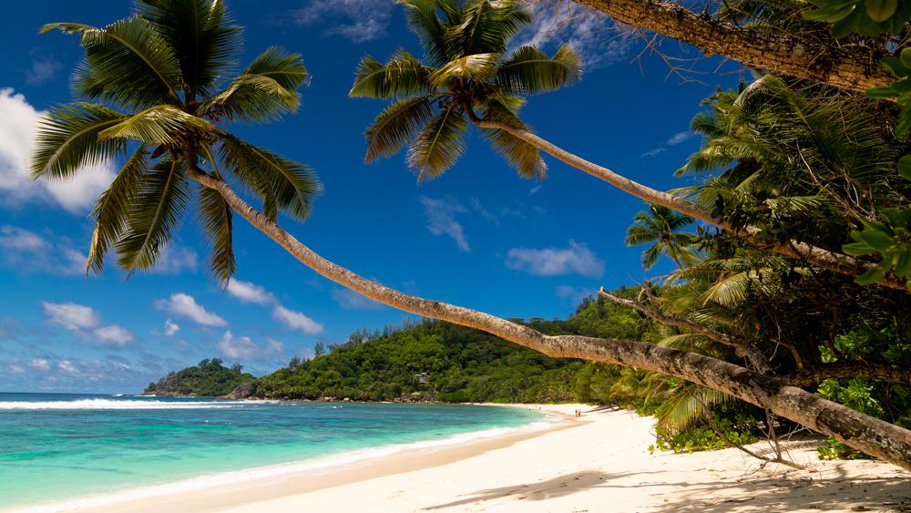 Najpiekneijsze plaże na Seszelach-11