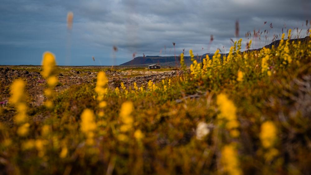 jak zaplanowac wycieczke na islandie