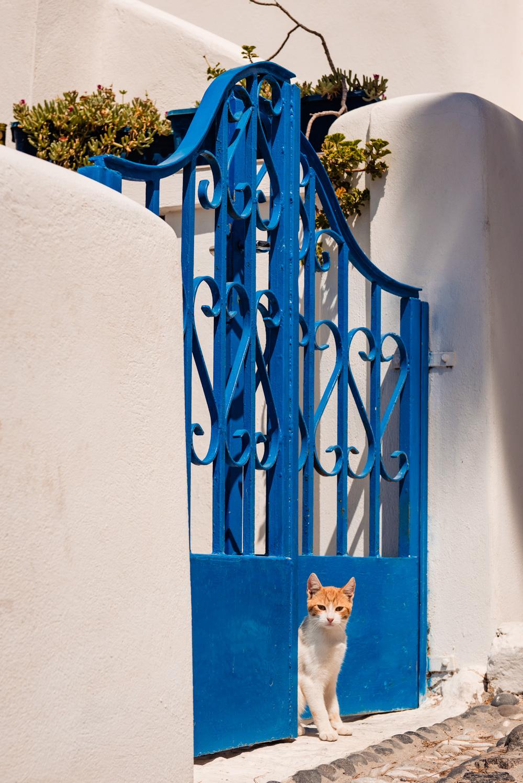 Koty na Santorini
